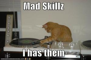 Deejaying - So easy even a drunk cat can do it.